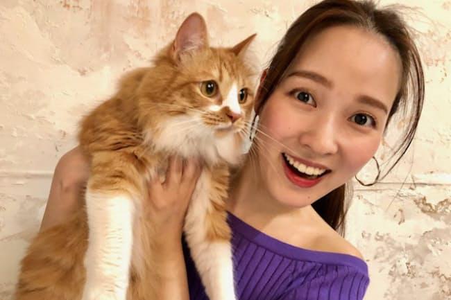 「30代を目前にして周囲でもペットを飼い始める友人が激増しました。しかし私自身は物件がペットNGのため飼えていません……。なので友人の愛猫・虎太郎くんに定期的に会って癒やされています」