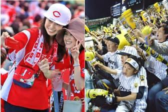 広島東洋カープと阪神タイガースは西日本屈指の人気球団だ