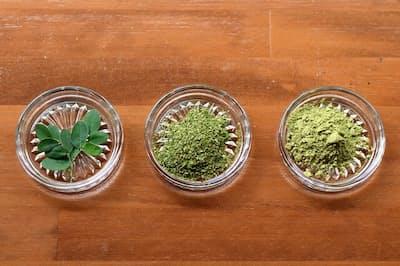 写真左からモリンガの生葉、茶葉、パウダー