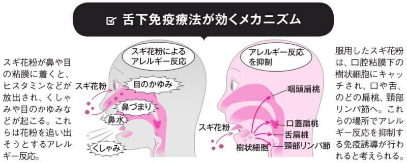 治療 舌禍