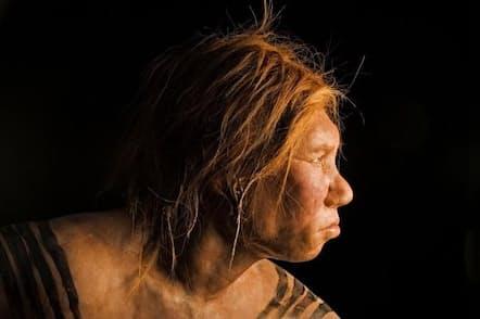 ネアンデルタール人女性の復元像。2008年に公開されたこの像は、古代のDNAの解析結果を利用して作成された最初の復元像だった(PHOTOGRAPHY BY JOE MCNALLY, NATIONAL GEOGRAPHIC CREATIVE)