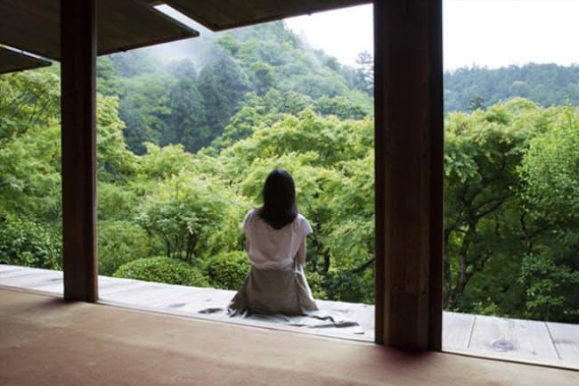 紡がれてきた歴史とともに、木下さんが感じ取った高山寺の「洗心力」を伝える。(NikkeiLUXEより)