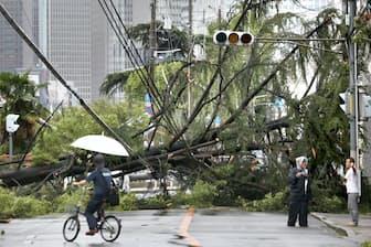 関西地方などに大きな被害をもたらした台風21号(9月4日、大阪市)