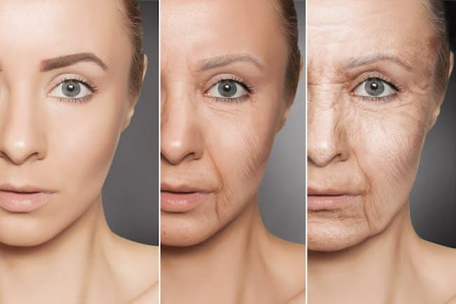 「老化 肌」の画像検索結果