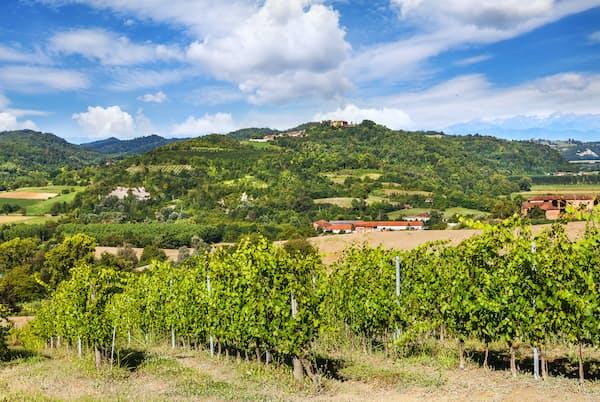 イタリアのピエモンテ州は農業が盛んなことでも知られる。写真はイメージ  =PIXTA