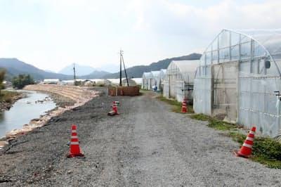 左側の三篠川が氾濫し7つビニールハウスが水につかった