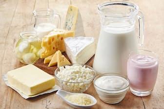 乳製品に含まれる脂肪分は健康に悪い?(C)Baiba Opule-123RF