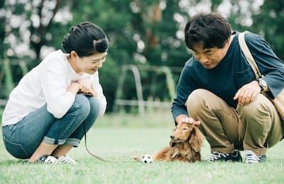 犬に向かって話しかける「間接話法」は、初対面の緊張をやわらげてくれる。写真はイメージ=PIXTA