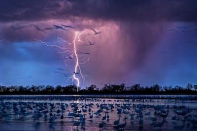 米ネブラスカ州カーニーを流れるプラット川。嵐の空に鳥たちの影が浮かび上がる(PHOTOGRAPH BY RANDY OLSON)