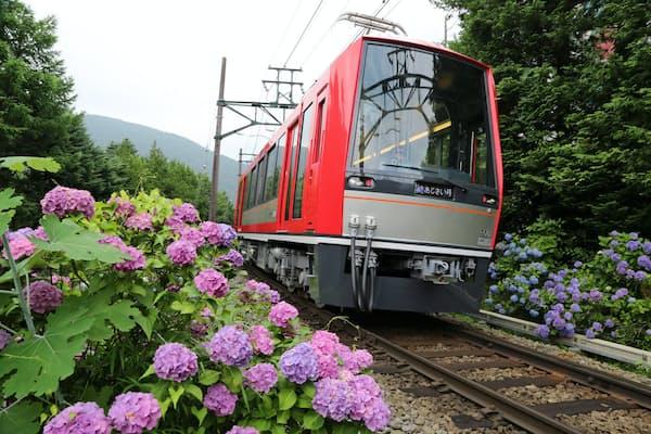 東日本1位の箱根登山電車