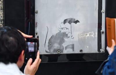 都庁にはバンクシーが描いた可能性のあるネズミの絵を見ようと、3万5000人が詰め掛けた(東京都新宿区)