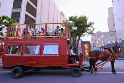 やさしい「ムサシコマ」がひく馬車で、爽やかな風を感じながら帯広市街を巡る