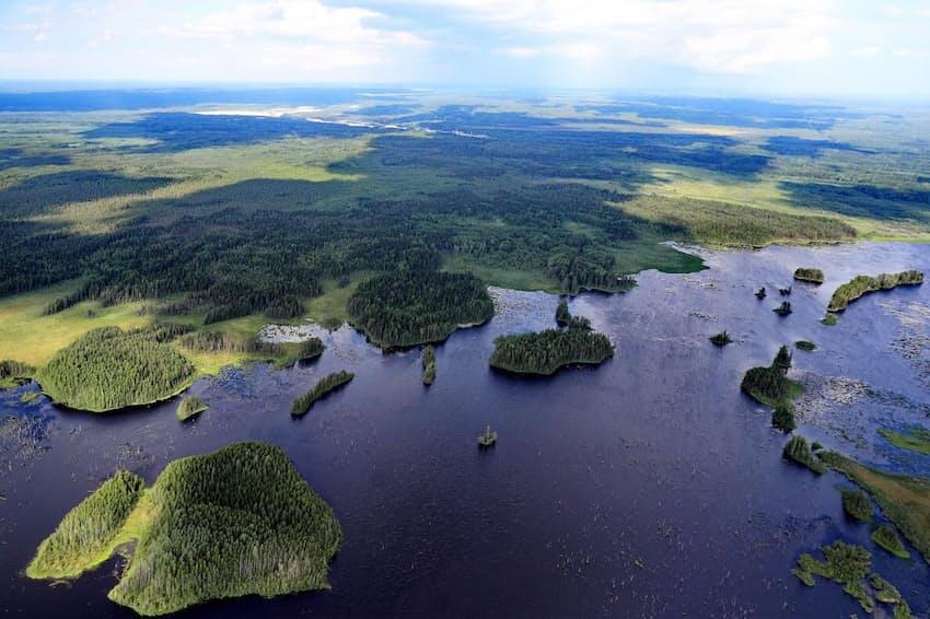 ロシア、ボログダ地方を流れるボログダ川の空撮写真。ロシアは、新たな森を植林することで、排出された温室効果ガスを削減できる国の最有力候補だ(PHOTOGRAPHY BY VLADIMIR SMIRNOV/ TASS/ GETTY)