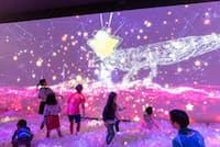 プレースホルダが運営する「リトルプラネット」。写真は、光と音のボールプール「ZABOOM」