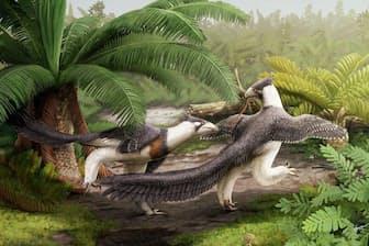 現在の米国ワイオミング州にあたる森で狩りをする、新種恐竜ヘスペロルニトイデス・ミエススレリのつがいの想像図。ヴェロキラプトルの近縁種で、鳥が空を飛べるように進化した過程を解く手がかりとなるかもしれない(ILLUSTRATION BY GABRIEL UGUETO)
