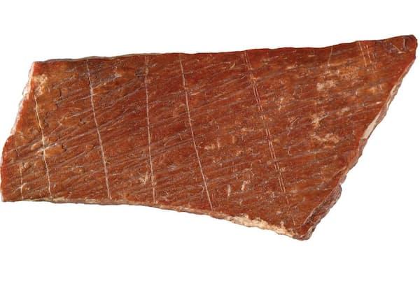 中国東部で最近出土した、刻線模様が彫られた親指ほどの大きさの2つの骨片のうちの1つ。これまで東アジアで最古とされていた抽象的な刻線模様よりも、さらに数万年さかのぼる(PHOTOGRAPH BY FRANCESCO D'ERRICO & LUC DOYON)