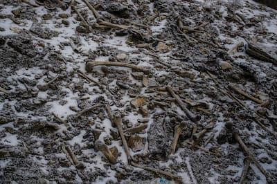 ヒマラヤ山脈、ループクンド湖の岸に人骨が散らばっている(PHOTOGRAPH BY HIMADRI SINHA ROY)