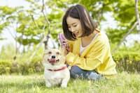 散歩しながら愛犬に語りかける飼い主は珍しくない。写真はイメージ=PIXTA