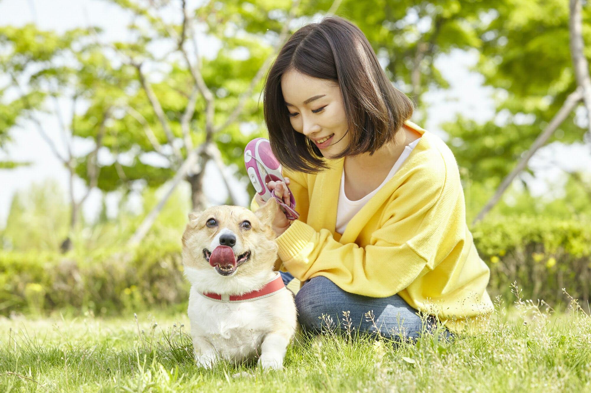 散歩 の サンドウィッチ 犬 マン