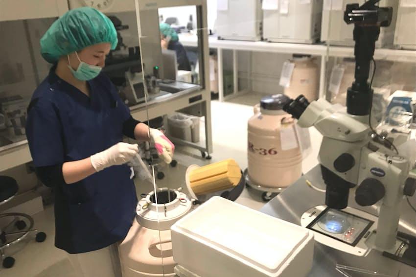 卵子は凍結のための作業を経て、液体窒素で満たされた専用の容器の中で保存される