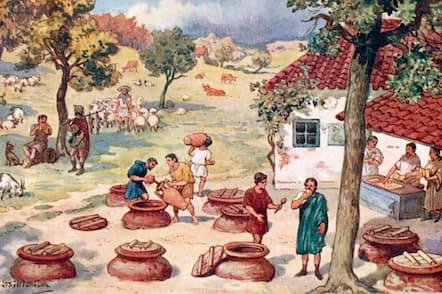 欧州でワインを作る人々は、何世紀にもわたってブドウの収穫日の記録をつけてきた。現在、ワイン用のブドウは、以前よりも数週間早く収穫の時期を迎える(ILLUSTRATION BY J WILLIAMSON/ LEBRECHT MUSIC & ARTS/ALAMY)