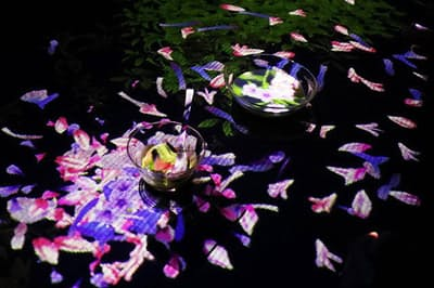 器を動かすと花がはらはらと散っていきます