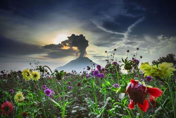 インドネシア西部のシナブン山。約400年にわたって休止していたが、2010年8月、噴火とともに眠りから覚めた。この一帯は太平洋プレートの境界がずれていることから、世界の活火山の約75%が集まっている(PHOTOGRAPH BY TIBTA PANGIN, ANADOLU AGENCY/GETTY IMAGES)