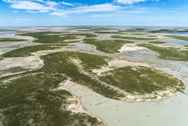 アフリカのザンベジ川以南には、はるか昔に緑豊かな湿地帯が広がっていた。現生人類はこの地から誕生したという新たな研究結果が発表された。現在、ここはマカディカディ塩湖と呼ばれる世界最大級の塩原になっている(PHOTOGRAPH BY BEVERLY JOUBERT, NAT GEO IMAGE COLLECTION)
