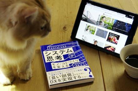 あなたがカフェを開くとしたらどうする? いっそ猫カフェにする?