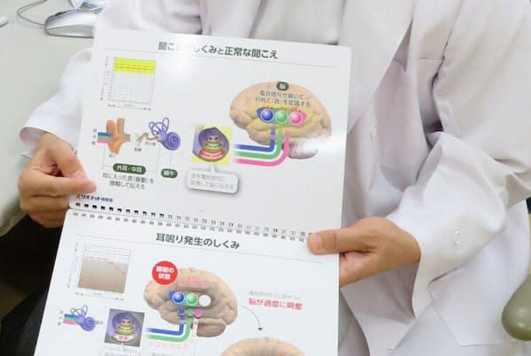 図を使って耳鳴り発生の仕組みを説明する新田医師(済生会宇都宮病院)