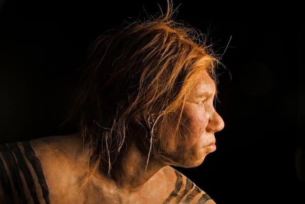 幅広いアフリカ人集団にネアンデルタール人由来のDNAがあることが明らかになり、これまでに調べられたすべての現代人集団で、過去にネアンデルタール人との交雑が起きていた痕跡が見つかった。今回の研究は、人類の歴史の複雑さとともに、共通の歴史の存在を強調する(PHOTOGRAPH BY JOE MCNALLY, NAT GEO IMAGE COLLECTION)