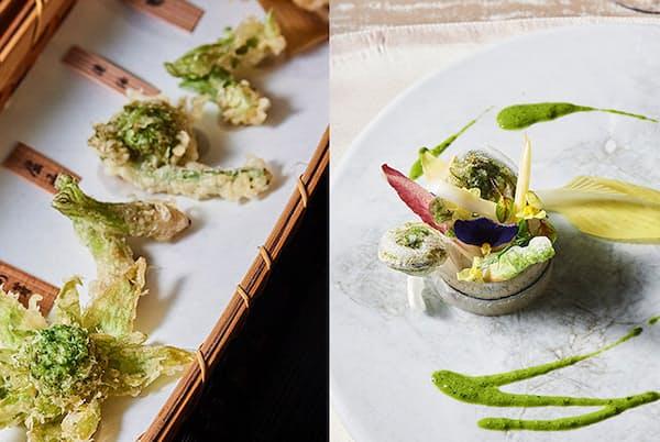 山菜の魅力を存分に堪能できる、懐石料理とイタリア料理の一皿。ほろ苦さに春の訪れを感じて。(NikkeiLUXEより)