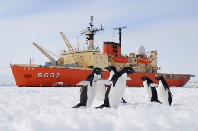 南極ではどのように食糧調達をし、どんな料理が作られているのか?(写真提供:島田剛)