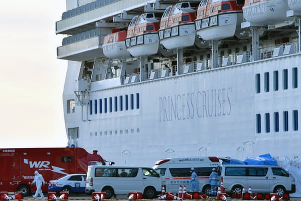 新型コロナウイルスの集団感染が起きたクルーズ船「ダイヤモンド・プリンセス」。デマが拡散し、打撃を受けた人も