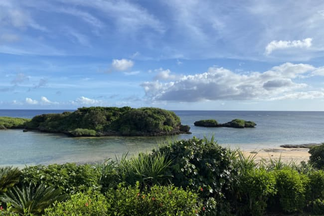 東洋のガラパゴスと称される西表島