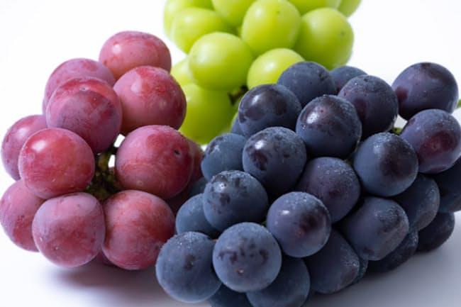 ブドウは果皮の色から赤系、緑系、黒系に大別される。写真は左からクインニーナ、シャインマスカット、巨峰=PIXTA
