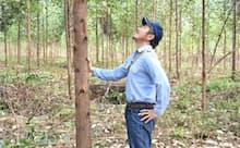地域社会へ貢献できるよう植林事業に力を入れている