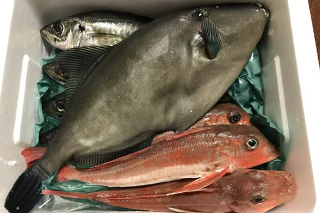 ポケットマルシェの鮮魚セット